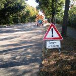 Baumpflege entlang der B3 in Rastatt